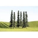 "Conifer Trees 3""-4"" (9pk)"