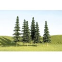 "Spruce Trees 3""-4"" (9pk)"