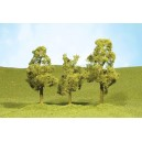 """Sycamore Trees 2 1/2""""-2 3/4"""" (4pk)"""