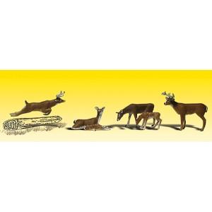 Deer (6pk)